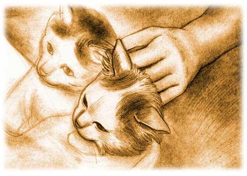 Esquisse de deux chatons
