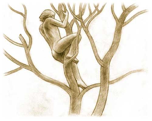 Homme nu dans un arbre, dessin au graphite